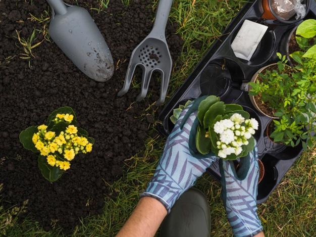 Jardinería Profesional